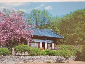 تعرف على تأشيرة التوظيف الكورية الجنوبية11